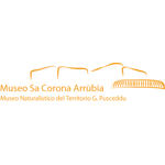 sa-corona-arrubbia-logo